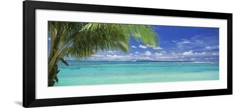 Palm Tree on the Beach, Huahine Island, Society Islands, French Polynesia--Framed Art Print