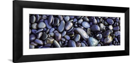 Close-up of Pebbles, Sandymouth Beach, Cornwall, England--Framed Art Print