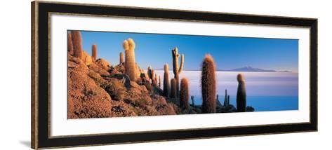 Cactus on a Hill, Salar De Uyuni, Potosi, Bolivia--Framed Art Print