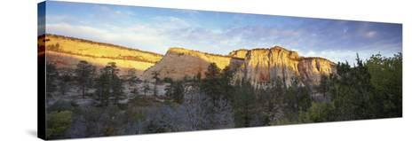 First Light on the Hills, Zion National Park, Utah, United States of America, North America-Lee Frost-Stretched Canvas Print