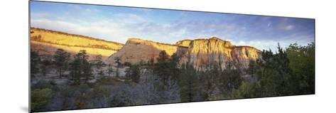 First Light on the Hills, Zion National Park, Utah, United States of America, North America-Lee Frost-Mounted Photographic Print