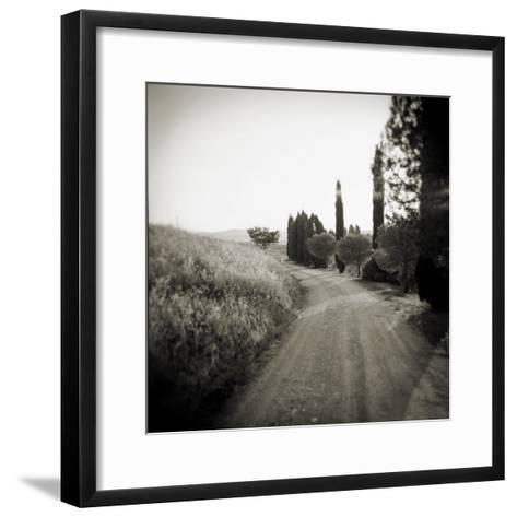 Country Lane with Cypress Trees in Early Morning Sunlight, San Quirico D'Orcia, Tuscany, Italy-Lee Frost-Framed Art Print