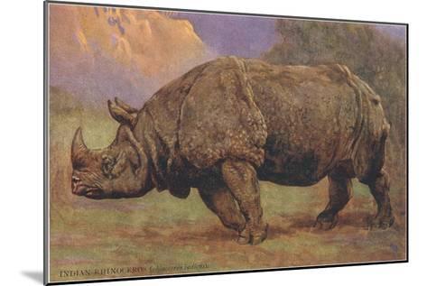 Charging Indian Rhinoceros--Mounted Art Print