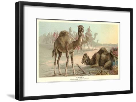 Caravan of Camels--Framed Art Print