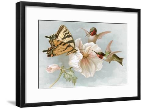 Hummingbirds, Hibiscus and Yellow Swallowtail--Framed Art Print