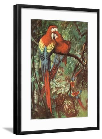 Macaws Nuzzling in Jungle--Framed Art Print