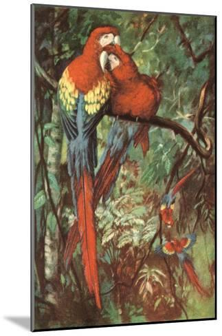 Macaws Nuzzling in Jungle--Mounted Art Print