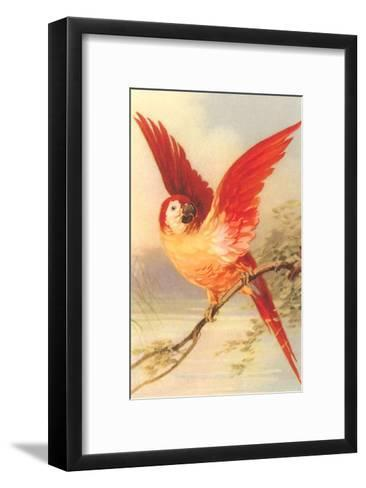 Mexican Double Yellow-Headed Parrot--Framed Art Print