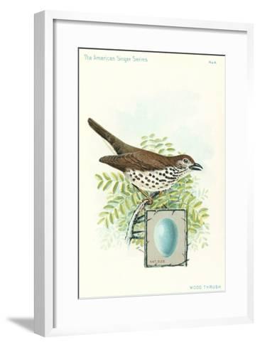 Wood Thrush and Egg--Framed Art Print