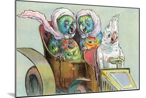 Cockatoo Driving Parrots--Mounted Art Print