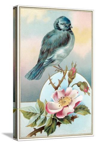 Bluebird on Rose Bush--Stretched Canvas Print