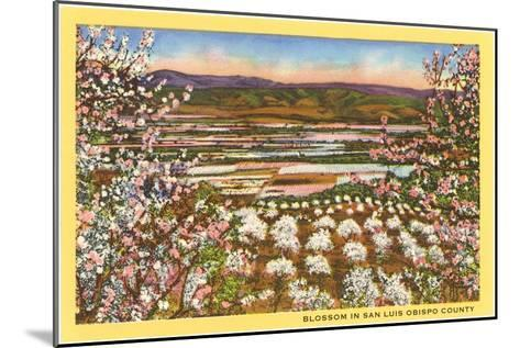 Blossoms in San Luis Obispo County--Mounted Art Print