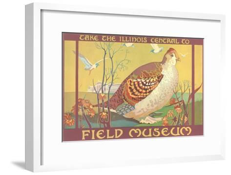 Poster for Field Museum with Quail--Framed Art Print