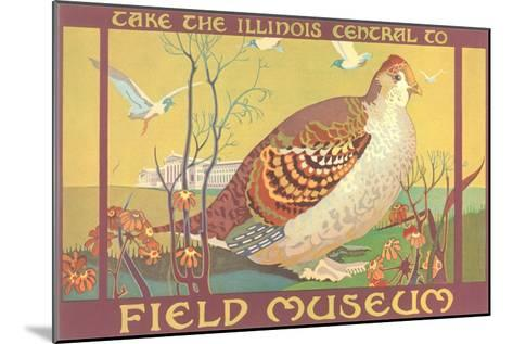 Poster for Field Museum with Quail--Mounted Art Print