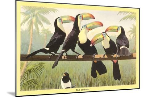 Toucans--Mounted Art Print