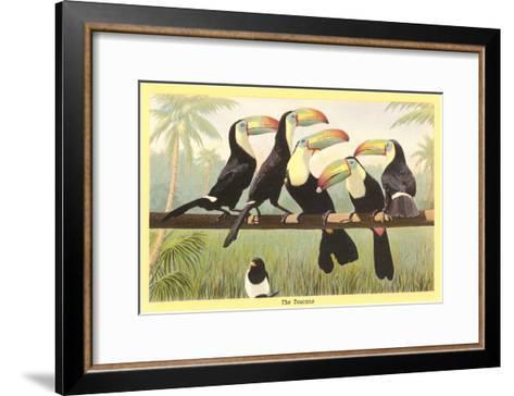 Toucans--Framed Art Print