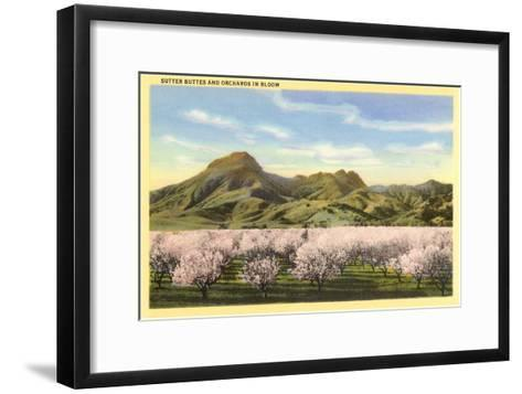 Sutter Buttes and Orchards in Bloom--Framed Art Print