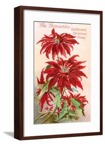Poinsettias, California Christmas Flower--Framed Art Print