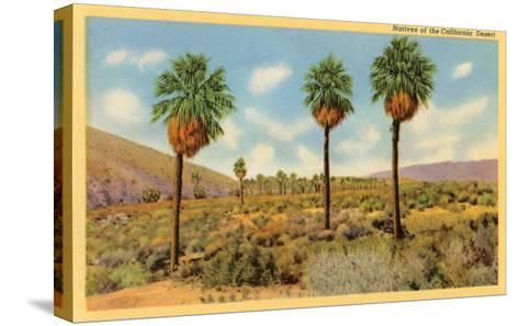 Palms in the California Desert--Stretched Canvas Print