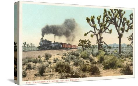 Joshua Trees, Train, California--Stretched Canvas Print