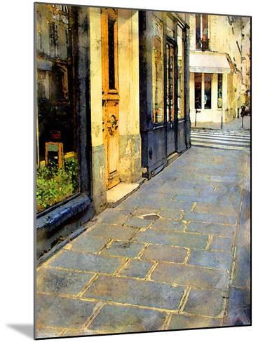 Stone Pavement in Paris, France-Nicolas Hugo-Mounted Giclee Print