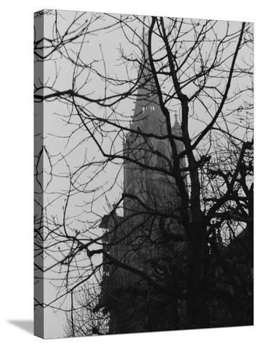 Tree and Church of Gothic Construction, Bern, Swiss-Tomaru Eiichi-Stretched Canvas Print