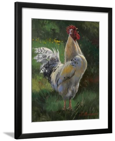 White And Yellow Rooster-Nenad Mirkovich-Framed Art Print