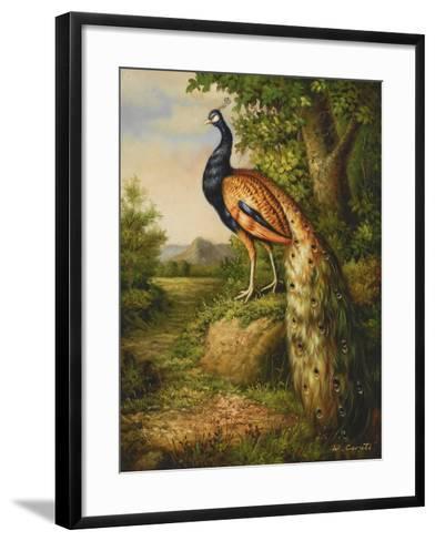 Classic Peacock--Framed Art Print