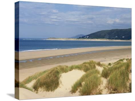 Sand Dunes and Borth Beach, Ynyslas, Borth, Dyfed, Wales, United Kingdom, Europe-Pearl Bucknall-Stretched Canvas Print