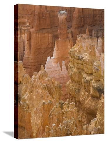 Thor's Hammer, Bryce Canyon National Park, Utah, United States of America, North America-Jean Brooks-Stretched Canvas Print