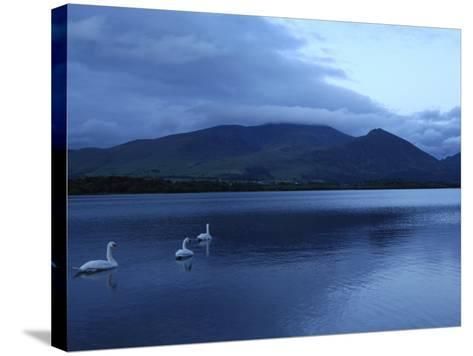 Twilight at Bassenthwaite Lake, Lake District National Park, Cumbria, England, United Kingdom-Rob Cousins-Stretched Canvas Print