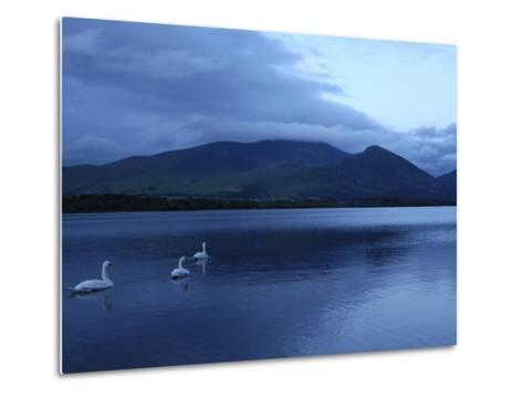 Twilight at Bassenthwaite Lake, Lake District National Park, Cumbria, England, United Kingdom-Rob Cousins-Metal Print