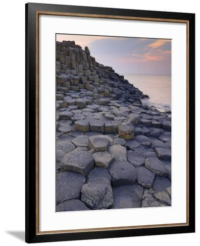 Giant's Causeway Near Bushmills, County Antrim, Ulster, Northern Ireland, UK-Neale Clarke-Framed Art Print
