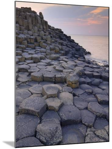 Giant's Causeway Near Bushmills, County Antrim, Ulster, Northern Ireland, UK-Neale Clarke-Mounted Photographic Print