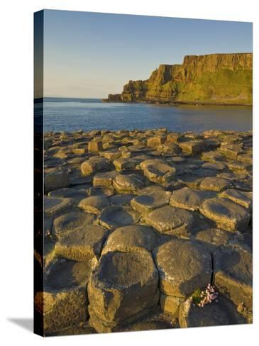 Giant's Causeway Near Bushmills, County Antrim, Ulster, Northern Ireland, UK-Neale Clarke-Stretched Canvas Print