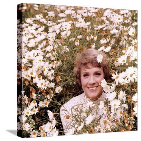 Julie Andrews Hour, Julie Andrews, 1972-1973--Stretched Canvas Print