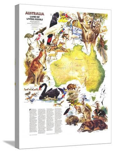 1979 Australia, Land of Living Fossils Map-National Geographic Maps-Stretched Canvas Print