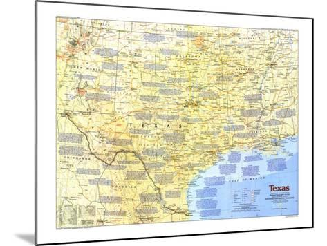 1986 Texas Map-National Geographic Maps-Mounted Art Print
