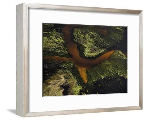 Seaweed and sand form a crossing pattern along the Atlantic shoreline-Bobby Haas-Framed Art Print