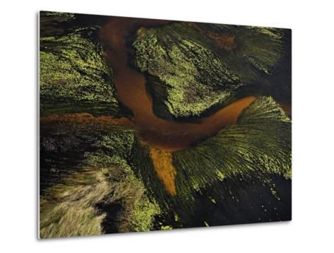 Seaweed and sand form a crossing pattern along the Atlantic shoreline-Bobby Haas-Metal Print