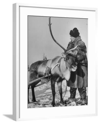 Lapp Tribesman Tending to His Reindeer-Mark Kauffman-Framed Art Print