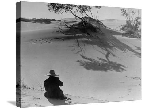 Sand Dunes Bordering Lake Michigan-Wallace Kirkland-Stretched Canvas Print
