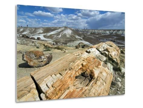 Petrified Logs Exposed by Erosion, Painted Desert and Petrified Forest, Arizona, Usa May 2007-Philippe Clement-Metal Print