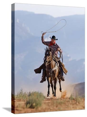 Cowboy Running with Rope Lassoo in Hand, Flitner Ranch, Shell, Wyoming, USA-Carol Walker-Stretched Canvas Print