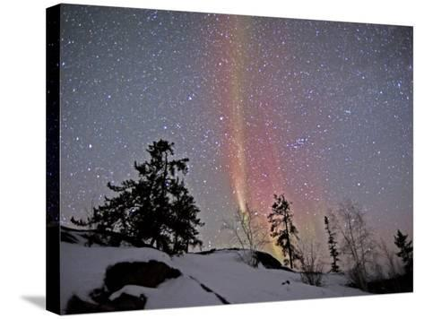 Northern Lights During Snow, Northwest Territories, March 2008, Canada-Eric Baccega-Stretched Canvas Print