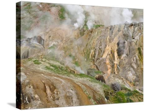 Stain Glass Wall and Geyser River in Valley of the Geysers, Kronotsky Zapovednik, Kamchatka, 2006-Igor Shpilenok-Stretched Canvas Print