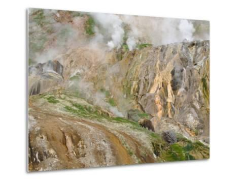 Stain Glass Wall and Geyser River in Valley of the Geysers, Kronotsky Zapovednik, Kamchatka, 2006-Igor Shpilenok-Metal Print