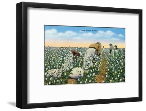 Texas - View of People Picking Texan Cotton, c.1940-Lantern Press-Framed Art Print