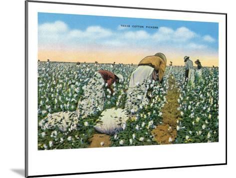 Texas - View of People Picking Texan Cotton, c.1940-Lantern Press-Mounted Art Print