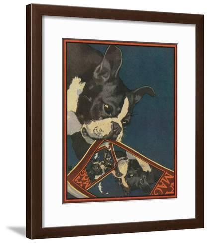 Nature Magazine - View of a Boston Terrier Tearing Up a Nature Magazine with its Picture, c.1931-Lantern Press-Framed Art Print
